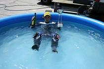 S TROFEJÍ pro třetí místo skončil Tomáš Vavrouš v bazénu, kde si v nesnesitelném slovenském horku užíval trochu ochlazení. Další závod ho čeká o víkendu v rámci Moto GP Red Bull Cupu.