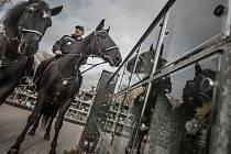 Strážníci městské policie Pardubice hlídkují na hřbitovech také v sedlech starokladrubských vraníků.