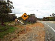 Jinde než v Austrálii na tyhle značky u silnic nenarazíte.