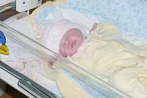 Michaela Mertová se narodila dne 11. února v 8:03 hodin. Měřila 52 centimetrů a vážila 4010 gramů. Tatínek byl s maminkou u porodu a rodina má ve Spytovicích ještě tříletou Lucii.
