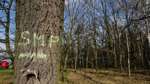 Pozemky, které si Služby města Pardubice nakoupily leží mimo katastrální území města. Jde o neudržovaný les, ke kterému nevede ani cesta.