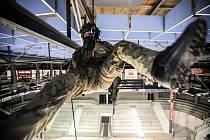 Na nedělní hokejové utkání se tentokrát připravuje i armáda. Vojáci pardubického 14. pluku logistické podpory před zápasem i při něm předvedou techniku i slaňování.