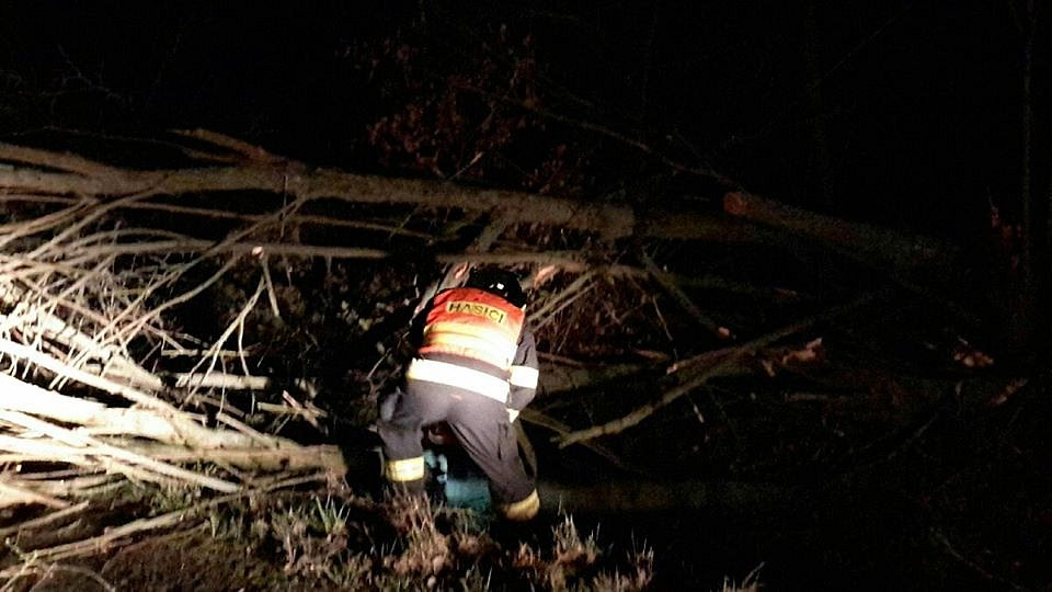 Hasiči v noci odstraňovali popadané stromy na komunikace