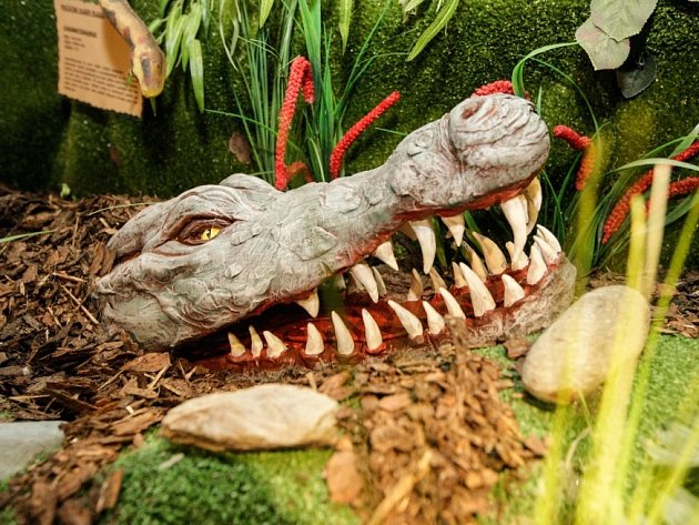 Za dinosaury do Mázhausu