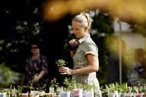 TŘI STOVKY ROSTLIN. Na výstavě byly k vidění desítky neřesků a dalšíéch rostlin.