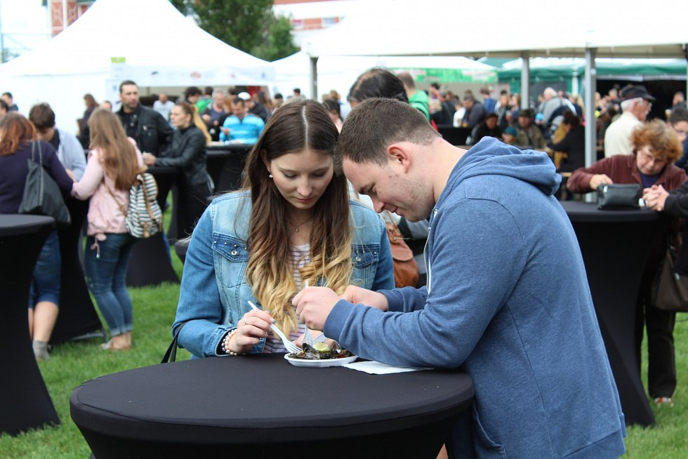 Bosch Fresh festival Pardubice 2017