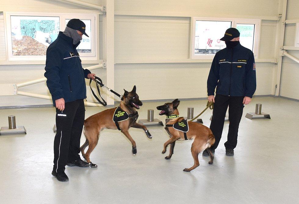 """V březnu museli psi z """"covid týmu"""" i s psovody do karantény kvůli britské mutaci."""