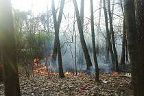 Chlapci zkoušeli zapálit karton, oheň se vlivem silného větru začal šířit po okolí. Zdroj: MP Pardubice