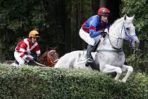 Žokej Marek Stromský s koněm Amant Gris