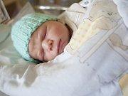Bernard Prokopec se narodil 20. října v 19:45 hodin. Měřil 49 centimetrů a vážil 3240 gramů. Maminku Janu u porodu podpořil tatínek Aleš a rodina je z Pardubic.