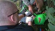 Motorkář po nárazu do mostku letěl několik desítek metrů vzduchem. Přiletěl pro něj vrtulník.