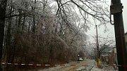 Aktuální problémy s ledem jsou také stromy. Takhle zasahují hasiči v okolí Jevíčka.