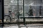Stejná situace každé ráno. Stojany na kola jsou stále problém. Cyklisté parkují kde se dá.