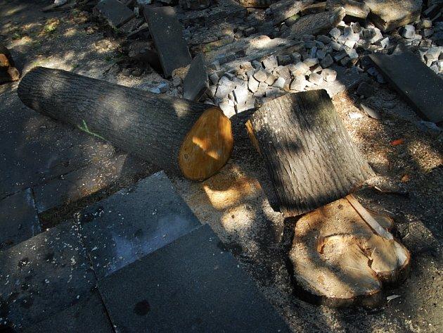 Rekonstrukce náměstí Čs. legií v Pardubicích