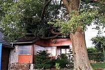 Červencová bouře v Pardubickém kraji úřadovala