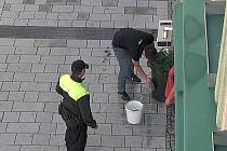 Výchovné opatření v praxi. Mladík, který močil do květináče kromě pokuty dostal také kbelík, hadr a úkol po sobě uklidit.
