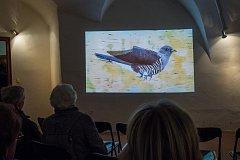 """Výstava věnovaná stěhovavým ptákům """"Táhni, ... ale vrať se!"""" na pardubickém zámku."""