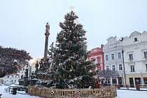 Hledá se strom pro letošní Vánoce na Pernštýňák