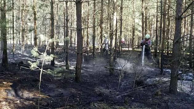 Les v Semíně na Přeloučsku zachvátil oheň.