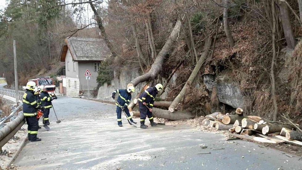 Silný vítr kácel stromy také na Orlickoústecku.