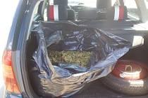 Pytel trávy za dva miliony asi není součástí povinné výbavy automobilu.