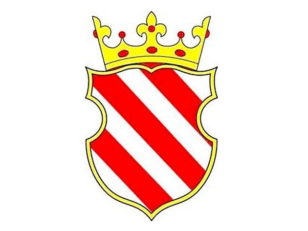 Znak města Sezemic