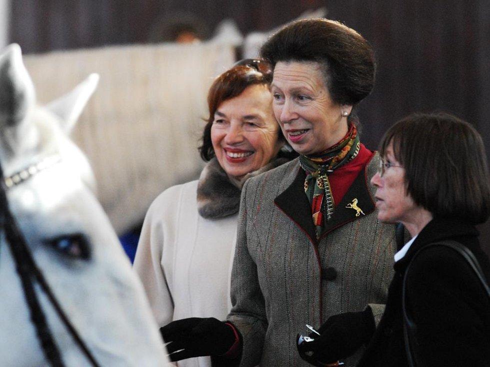 Princezna Anna v kladrubském hřebčíně