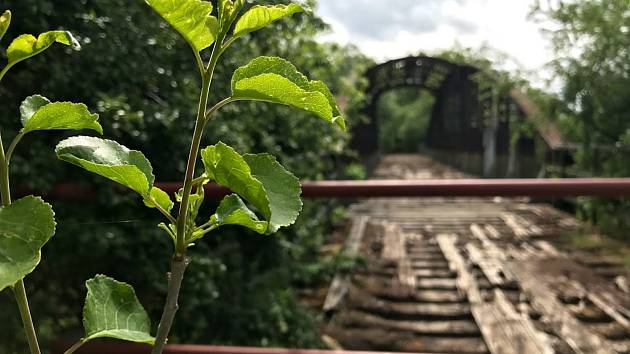 Kohnův most v bývalém vojenském areálu Červeňák má shnilou mostovku.