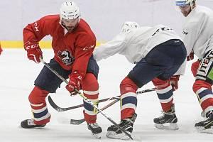 PŘÍPRAVA. Útočník Robert Kousal trénuje společně s týmem Dynama na ledě.