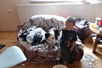 Dítě a pes. Stav bytu, který muži zákona otevřeli, vůbec nebyl vůbec dobrý. Po zemi nedopalky cigaret, zbytky jídla, zápach, psí výkaly a odpojená elektřina.