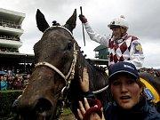 Petr Přikryl, šéf veterinářů na pardubickém dostihovém závodišti při ranní veterinární prohlídce koní