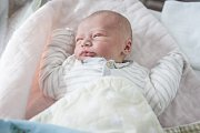 Dalibor Šálek se narodil 20. října v 16:44 hodin. Měřil 49 centimetrů a vážil 3180 gramů. Maminku Lucii u porodu podpořil tatínek Pavel a rodina je z Pardubic.