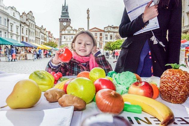 Den Země na Pernštýnském náměstí.