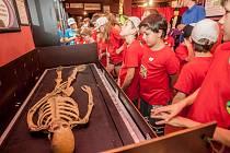 Musemu kouzel Pardubice sídlící na třídě Jana Palacha rozšířilo paletu českých muzeí. Soukromá sbírka kouzelnických rekvizit z celého světa je nejrozsáhlejší v České republice a na evropské úrovni a jako muzeum provede zájemce dějinami jak světové, tak če