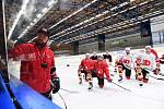 Asistent trenéra David Havíř a hokejisté Pardubic na tréninku.