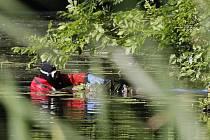 Na hladině slepého ramene Labe u Rosic byla nalezena mrtvola muže