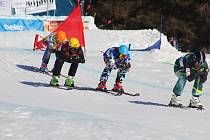 Skicross na Dolní Moravě