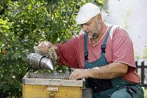 Evžen Báchor z Pardubic se stará o 80 milionů včel