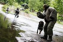 Bojové podmínky - výcvik psovodů se odehrával nejen na souši, ale také  přímo v řece.