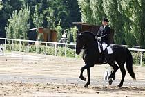 Na pískovém kolbišti se představila také Iva Hejlová (Kladruby n. L.) s koněm Sacramoso Mantovia XLIX-30