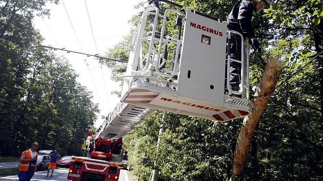 K PÁDU STROMU na trolejové vedení došlo v pátek odpoledne mezi Rybitvím a Lázněmi Bohdančí. Nakloněný strom odstranili přivolaní hasiči. Kvůli bezpečnosti provozu i pracujících hasičů museli dopravu v průběhu prací řídit strážníci.
