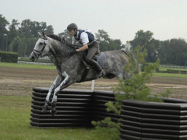 dostihové závodiště, koně