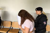 V Třebovicích na Orlickoústecku došlo v jednom z domů k hádce – žena své dceři vyčítala, že nemá práci. Ta vzala sekeru a zasadila matce několik ran do hlavy. Ve středu byla vzata v Ústí nad Orlicí do vazby.