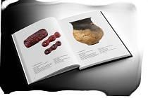 Mikulovice - život na hraně je publikace, která shrnuje vše, co se o životě lidí pod mikulovickým kopcem a jeho okolí od pravěku až do stěhování národů dosud podařilo zjistit.