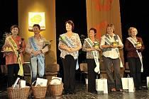 Soutěžní klání o titul Primababča 2010 má úspěšně za sebou první semifinálové kolo. To se uskutečnilo v pardubickém Kulturním domě Hronovická.