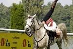 Koně v akci na pardubickém dostihovém závodišti