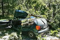 Pád dubu na auto přežila řidička jen se štěstím. Z vozu jí vyprostili až hasiči.