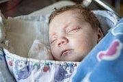 Anna Hofmannová se narodila 10. září ve 22:48 hodin. Měřila 50 centimetrů a vážila 3220 gramů. Maminku Michaelu u porodu podpořil tatínek Jiří a rodina je z Pardubic.
