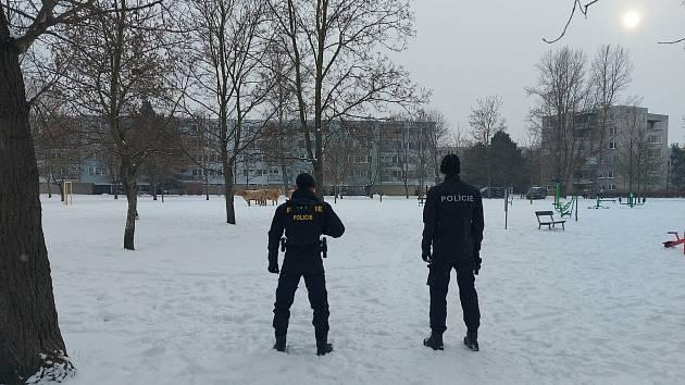 Policisté v Hradci zasahovali u odchytu volně se pohybujícího skotu.
