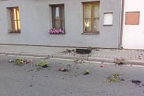 Rozházené květináče v Labské ulici